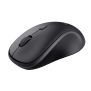 TM-250 Wireless Mouse-Visual